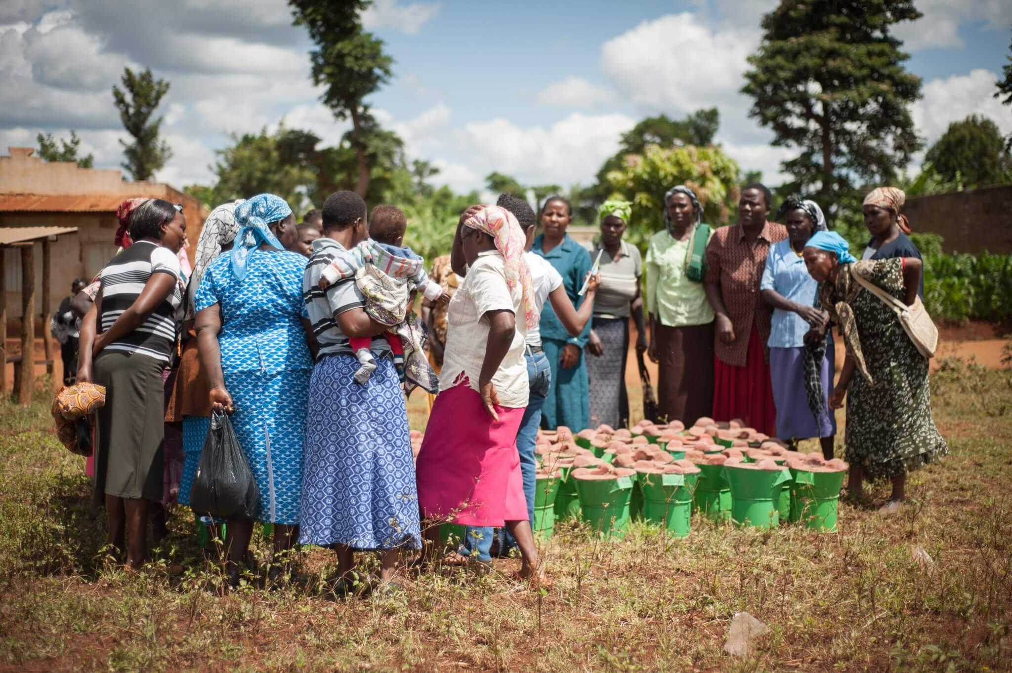 Nos 5 ingrédients clés<br>pour générer de l'impact à grande échelle<br>avec les communautés rurales