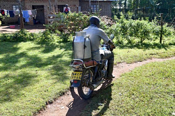 Kenya_GT_0613
