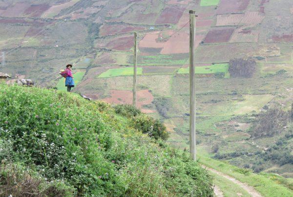 Perou - Livelihoods Fund - ITYF