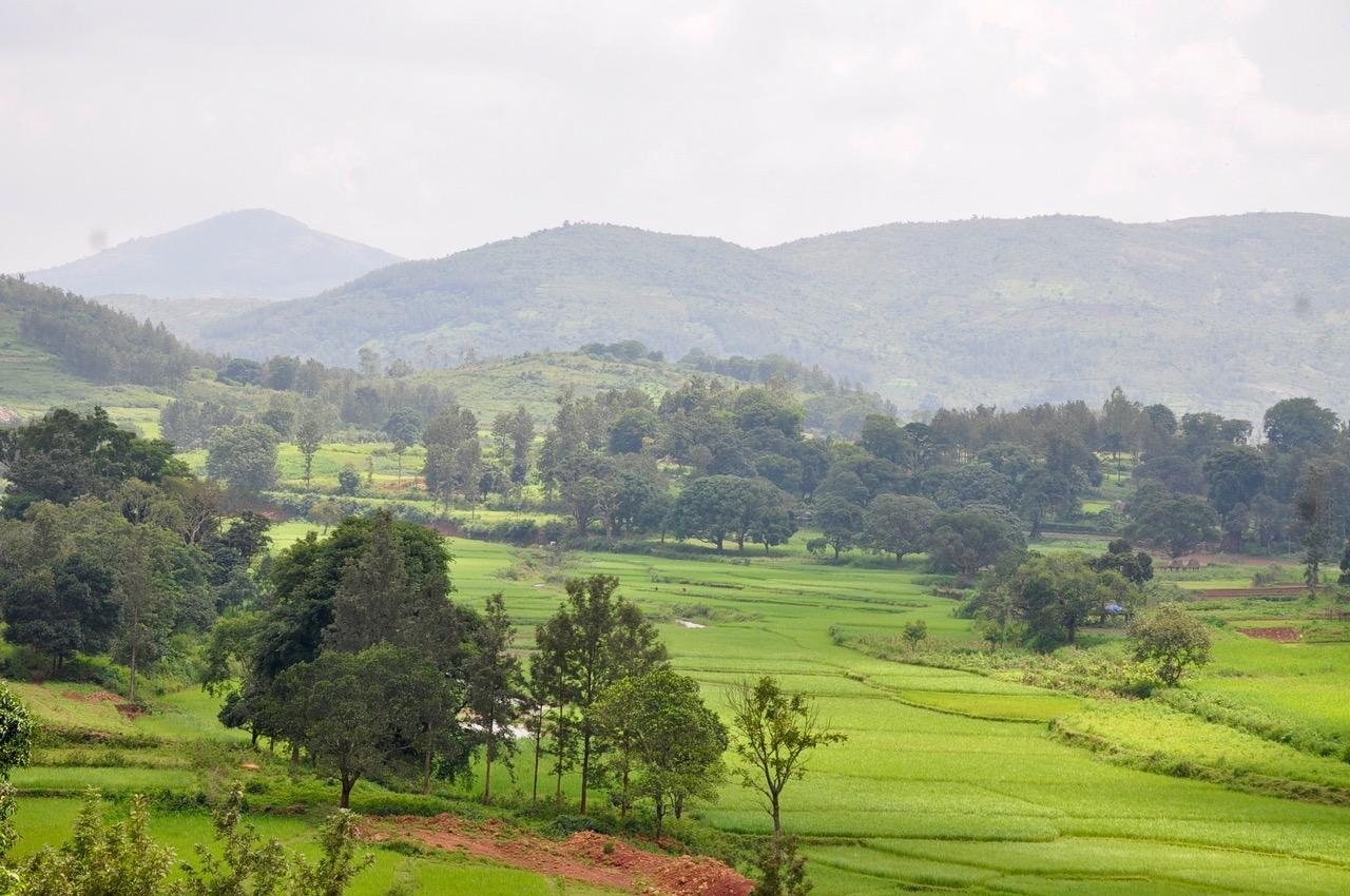 L'approche territoriale du projet Livelihoods – Araku #2 en Inde