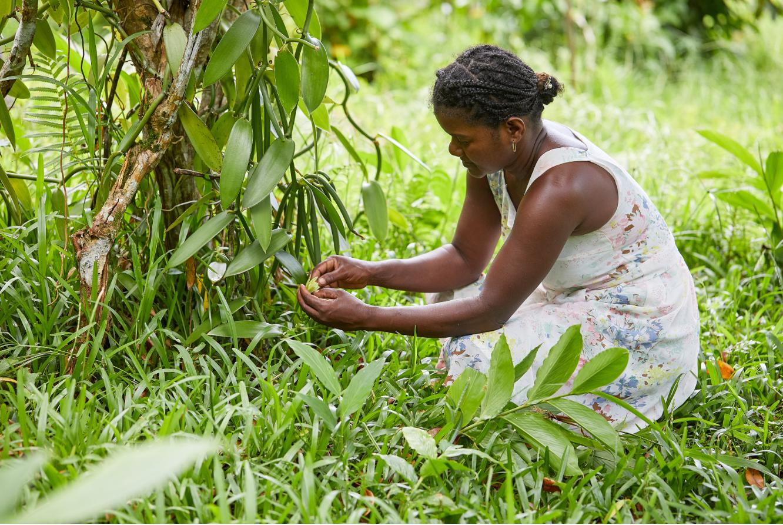 Éliminerla pauvreté : <br> Le grand débat sur le revenu des fermiers