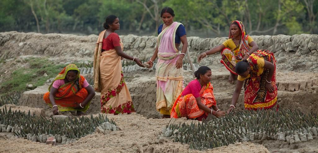 Interview avec Ajanta Dey, Inde : <br> « LIVELIHOODS A PERMIS DE MENER NOTRE MISSION A ECHELLE »