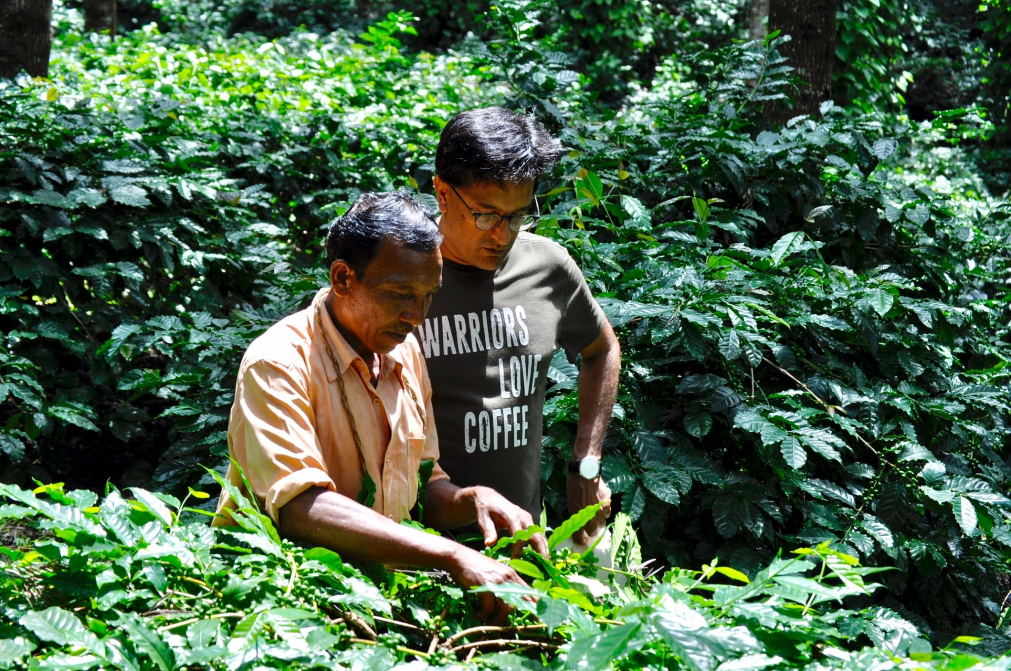 """Interview with Manoj Kumar, India: <br> """"WE SHOULD TALK ABOUT SUSTAINABLE LAND MANAGEMENT INSTEAD OF CARBON OFFSETS"""""""
