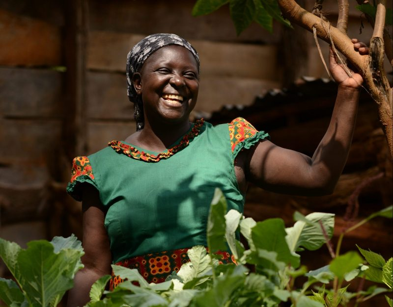 An innovative partnership to improve the livelihood of 30,000 smallholder farmers in Kenya