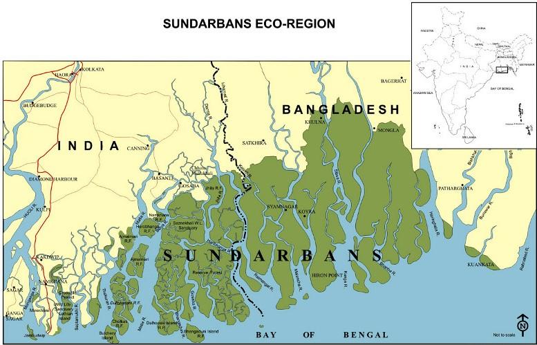 Sundarbans India